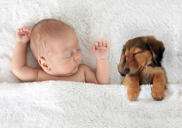 Sleeping baby and puppy