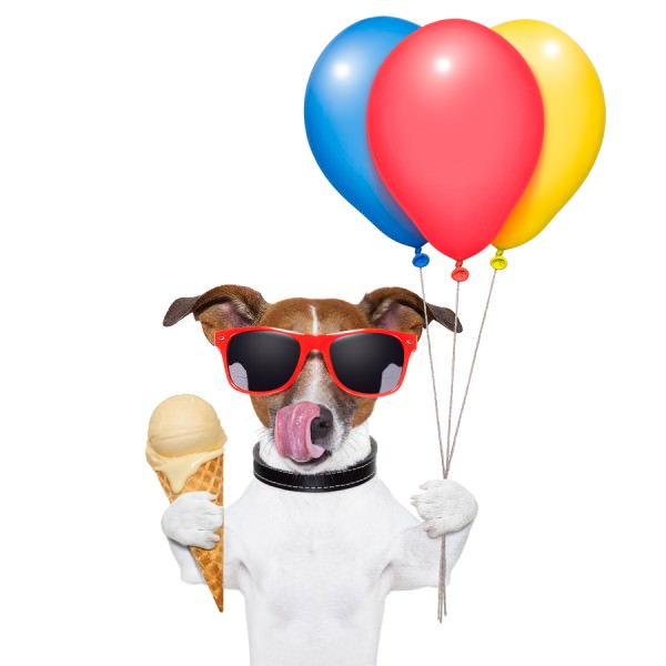 bigstock-Dog-With-Ice-Cream-41456551