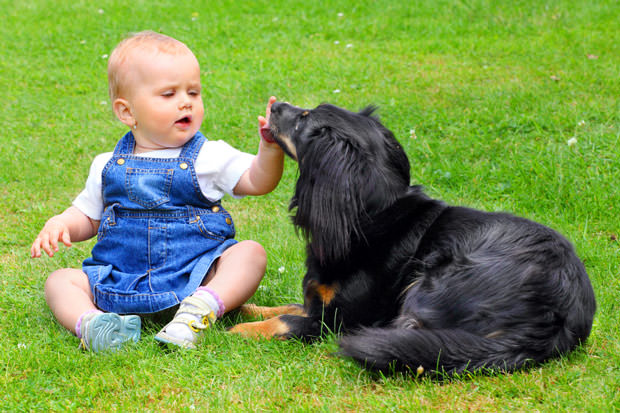 bigstock-Little-girl-and-here-dog-on-a--22229279