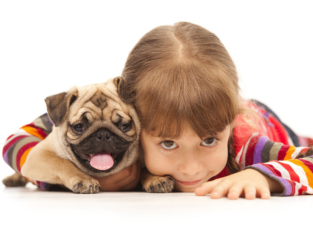 bigstock-Little-girl-and-the-Pug-dog-is-17575418