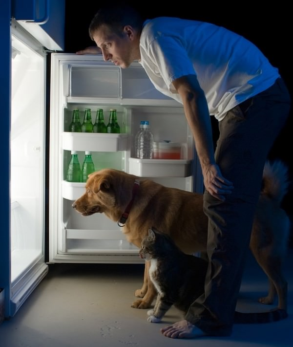 bigstock-Man-Looking-Into-Fridge-2420767