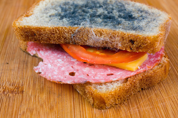 bigstock-Moldy-Sandwich-With-Salami-To-55544321